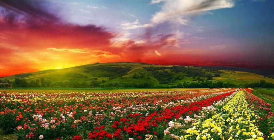 La Belleza De Bulgaria ( min 10 pax )