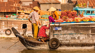 Vietnam Esencial y Delta Mekong *
