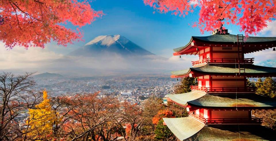 Japón Magnifico