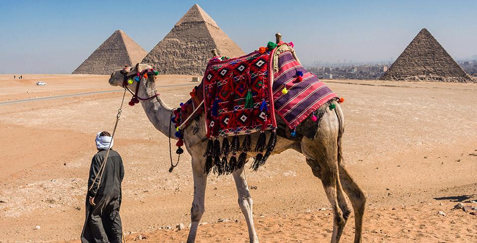 Esencias de Egipto ( Puente de Diciembre)