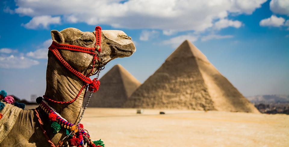 Esencias de Egipto T.I  ( Fin de Año )