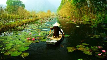 Vietnam Especial