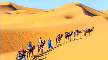 Puerta del Desierto Con Vuelos *