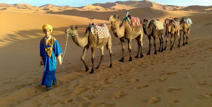 Marruecos Imperial desde Casablanca sin vuelos