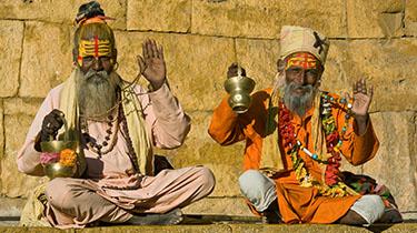Maravillas de la India*