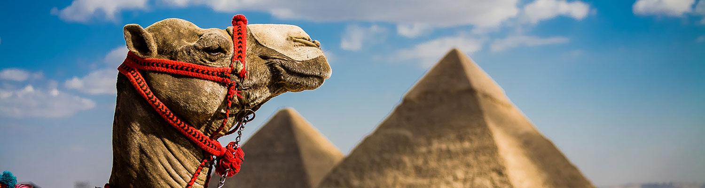Esencias de Egipto T.I ( Fin de Año)